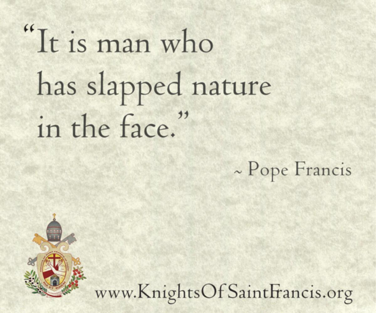 pope-quote10@2x600x500