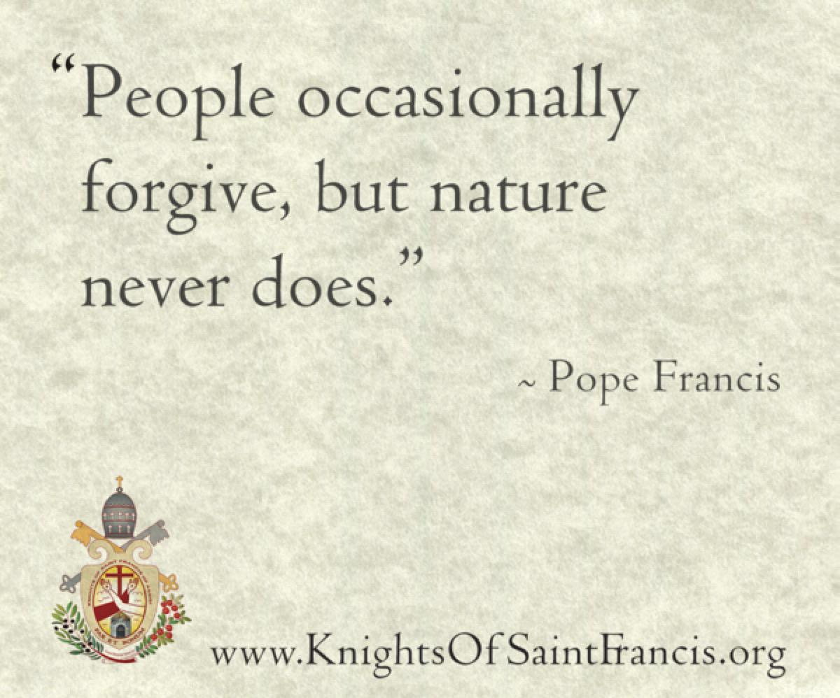 pope-quote3@2x600x500