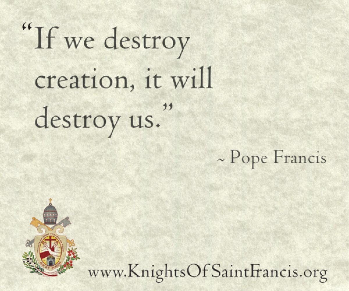 pope-quote7@2x600x500
