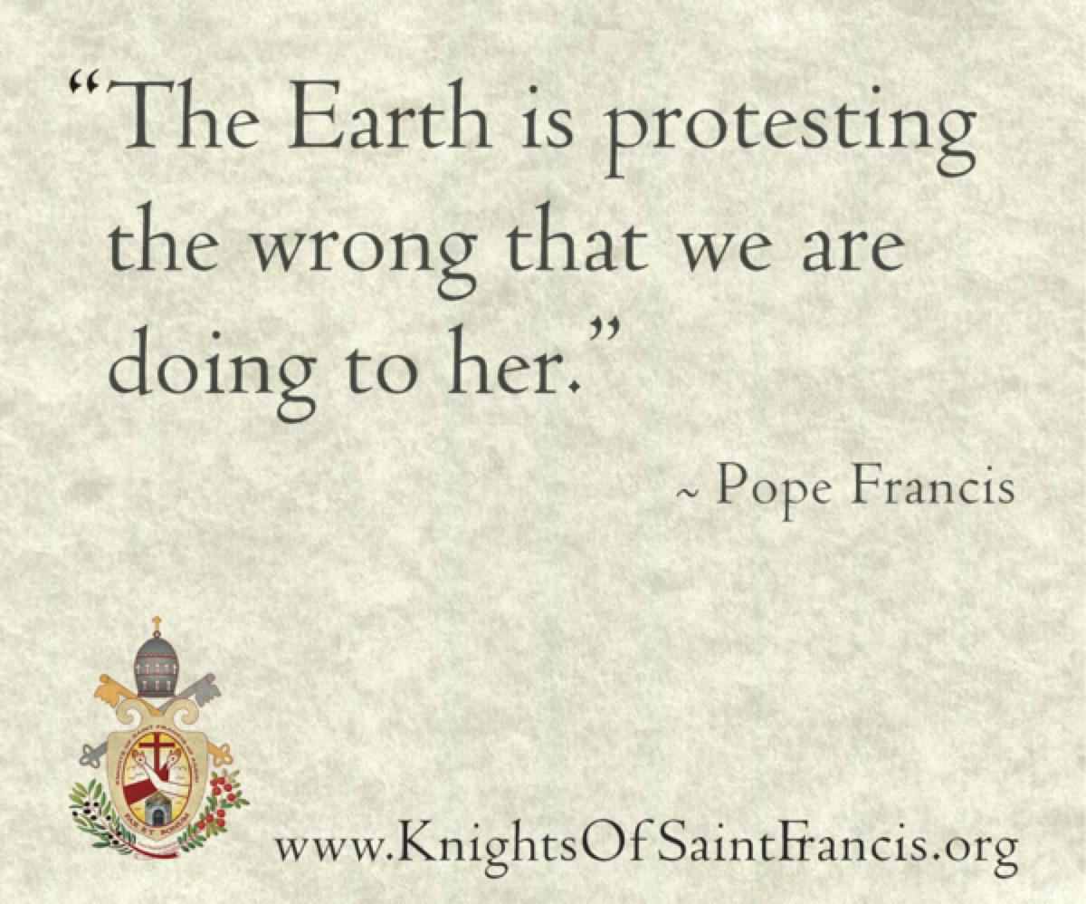 pope-quote8@2x600x500